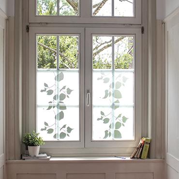 windowfilmnew